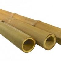 APUS bambuszrúd