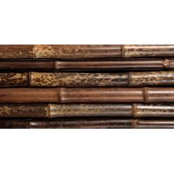 BORYANA tigrisbambusz, 2400 x 40-45 mm