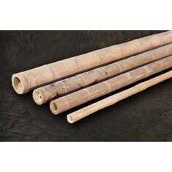 Guadua bambuszrúd, 6000 x 50-75 mm