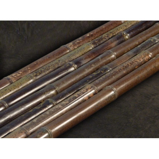 BORYANA tigrisbambusz, 2400 x 60-70 mm