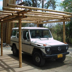 Guadua bambuszrúd, 3000 x 100 - 120 mm