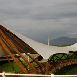 Guadua bambuszrúd, 3000 x 50-75 mm