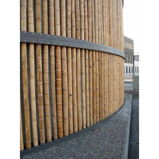 Guadua bambuszrúd, 3000 x 75 - 100 mm