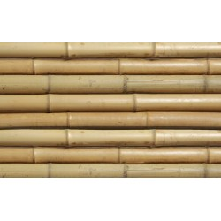 MOSO bambuszrúd, 2400 x 24-26 mm