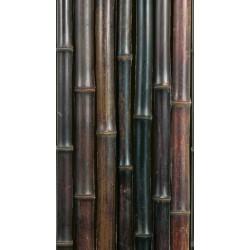 NIGRA bambuszrúd, 2000 x 20-22 mm