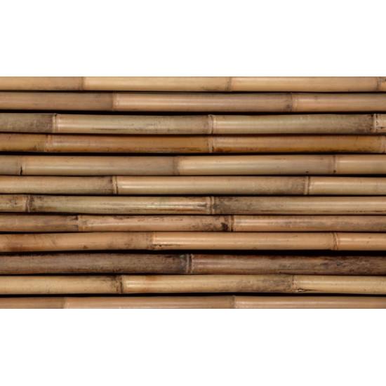 TONKIN bambuszrúd, 3000 x 35-40 mm