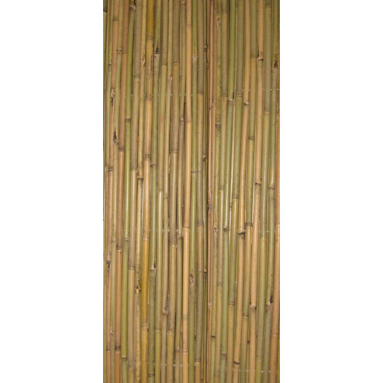 TONKIN bambuszrúd, 2000 x 40-45 mm
