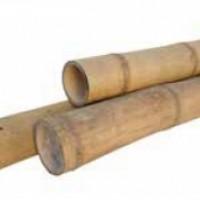 GUADUA bambuszrúd
