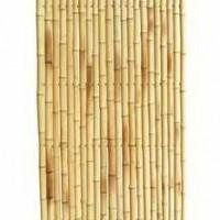 TRENDLINE bambusz kerítés