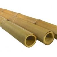 Bambusz rúd (98)
