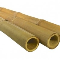 Bambusz rúd