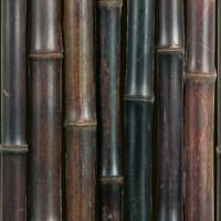 NIGRA bambuszrúd