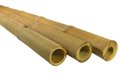 APUS bambuszrúd (8)